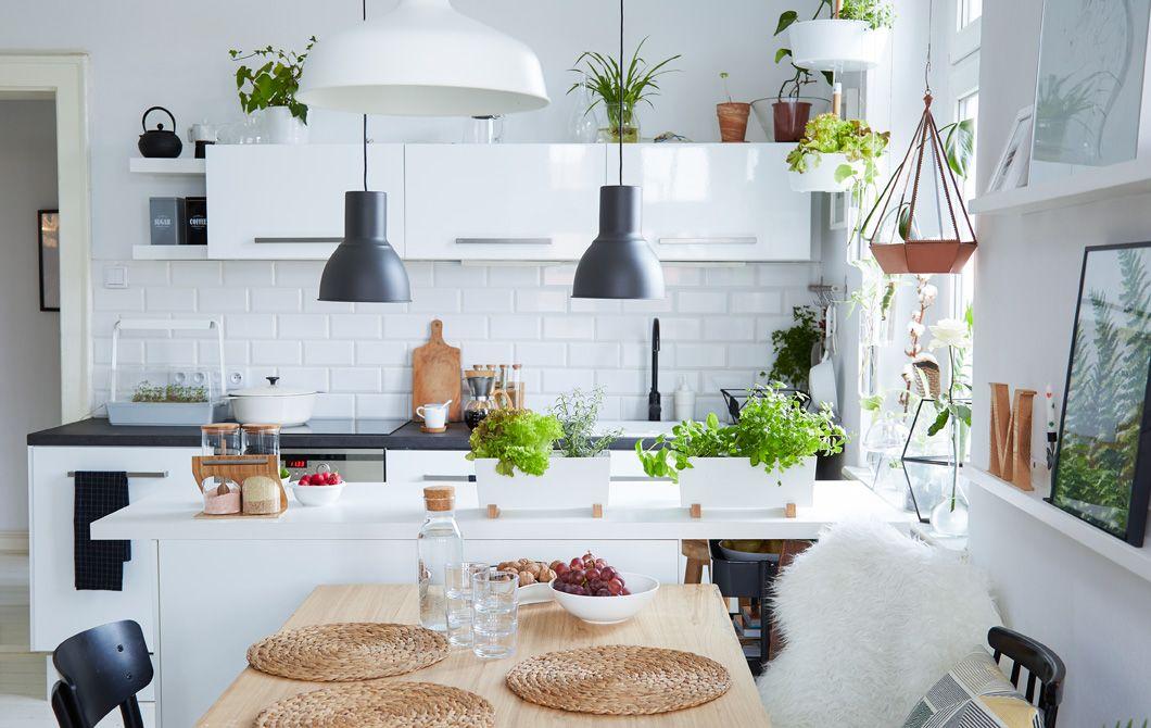 organize kitchen space