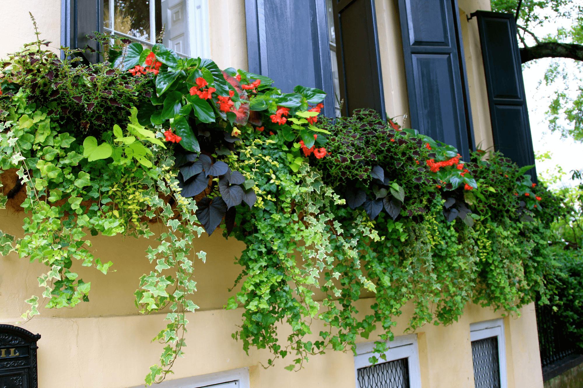 Colourful balcony design tips