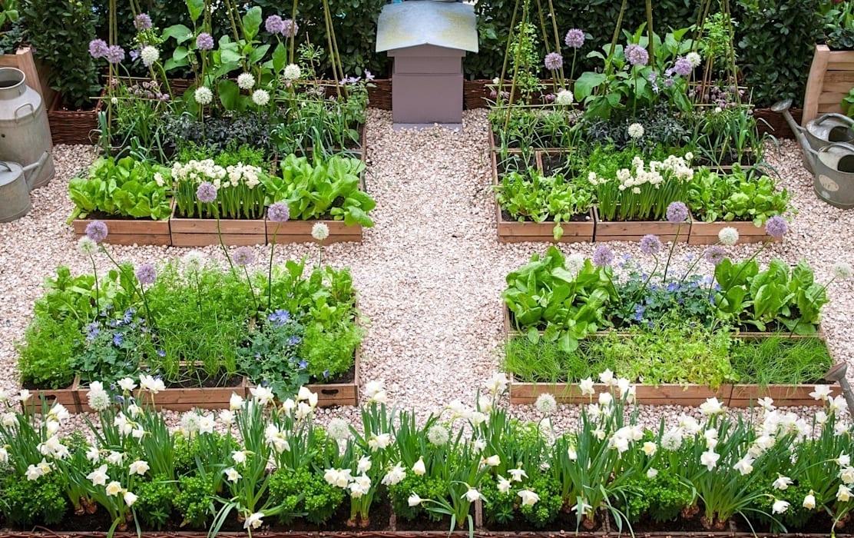 home garden patch