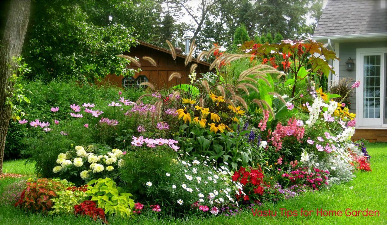 Colourful gardening ideas