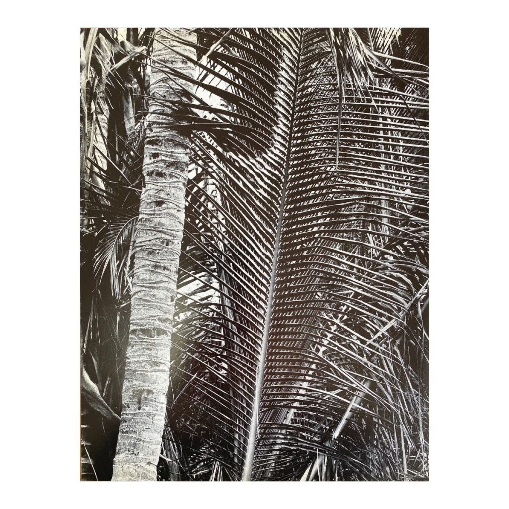 posterchilddprints