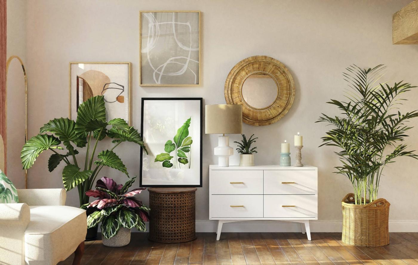 learn interior design software